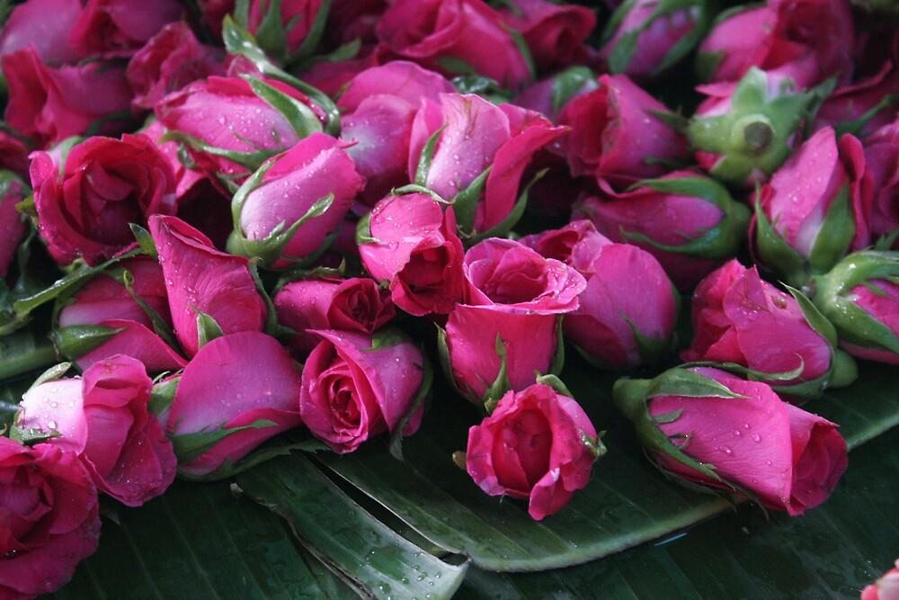 roses on banana leaf by hellsbell