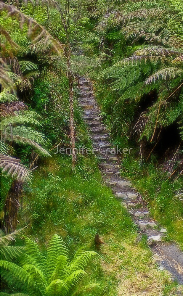 Noojee Walking Path by Jennifer Craker