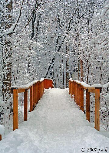 Snow Covered Bridge by john403
