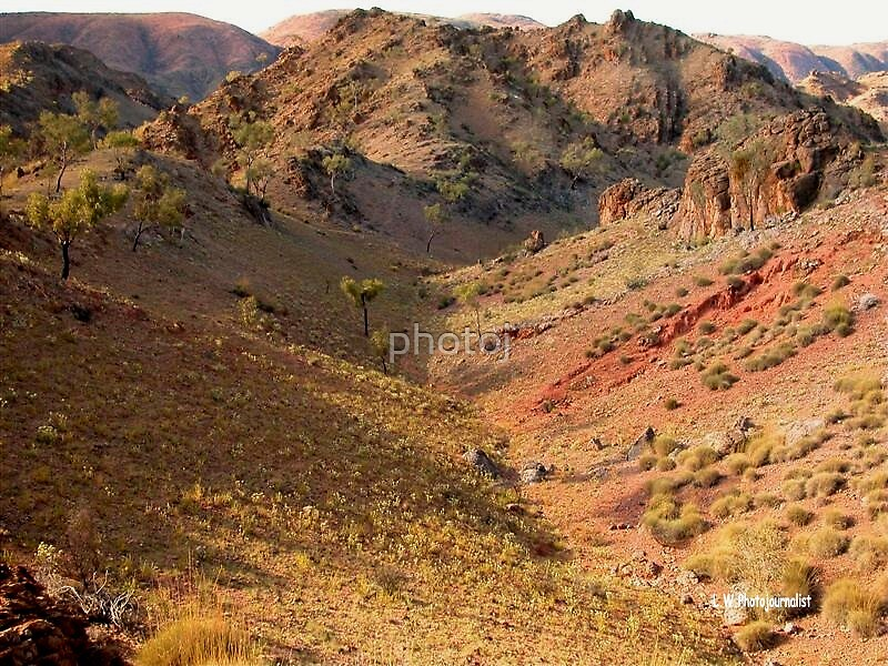 photoj Central Australia Landscape by photoj
