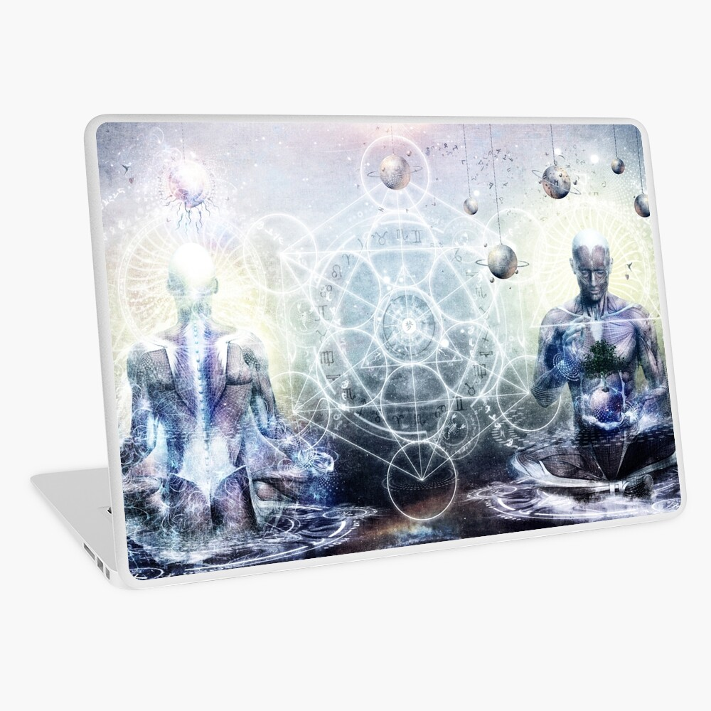 Experience So Lucid, Discovery So Clear Laptop Skin