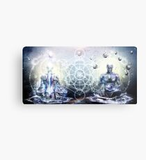 Experience So Lucid, Discovery So Clear Metal Print