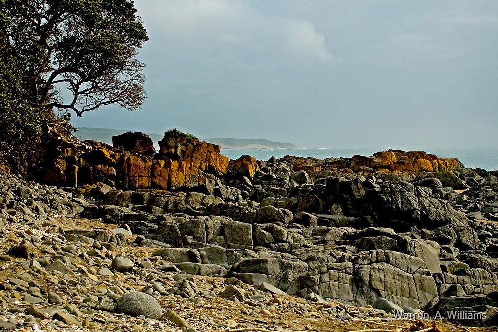 Red Rocks by Warren. A. Williams