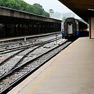 Railway by Aneurysm