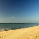 Beach by Aneurysm