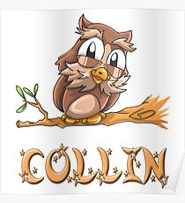 Collin Owl Poster