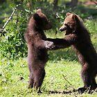 Dance With Me by Jo Nijenhuis