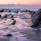 Jagged Rocks of Dollar Cove by Andrew Hocking