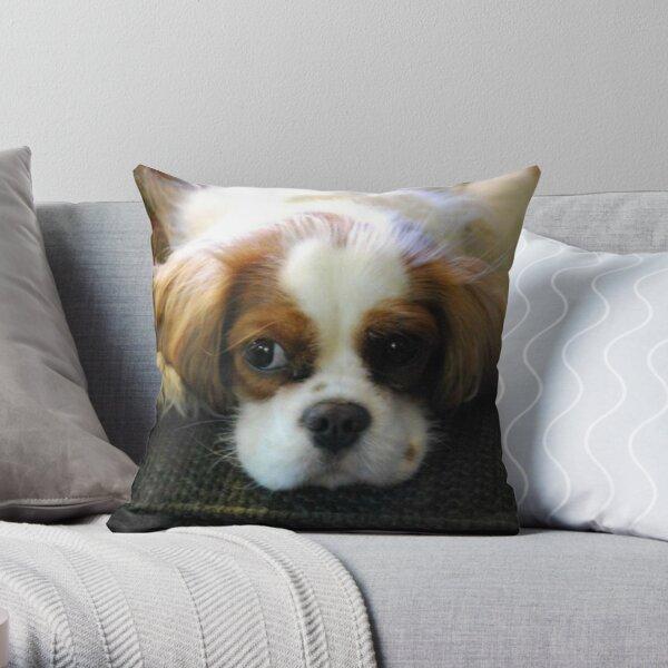 Pensive Pup Throw Pillow