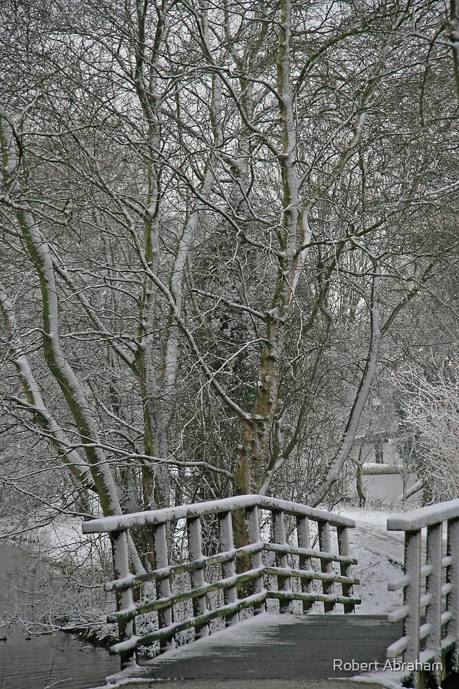 Fairy Woods by Robert Abraham
