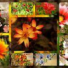 Bouquet by karenlynda