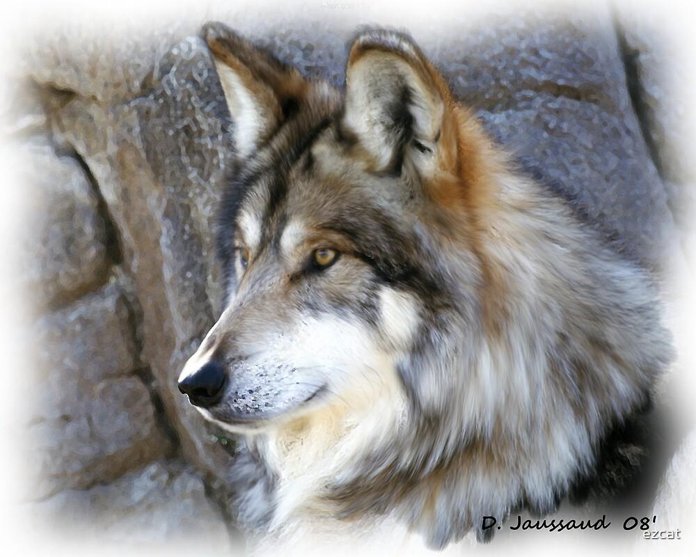 Alpha Wolf by ezcat