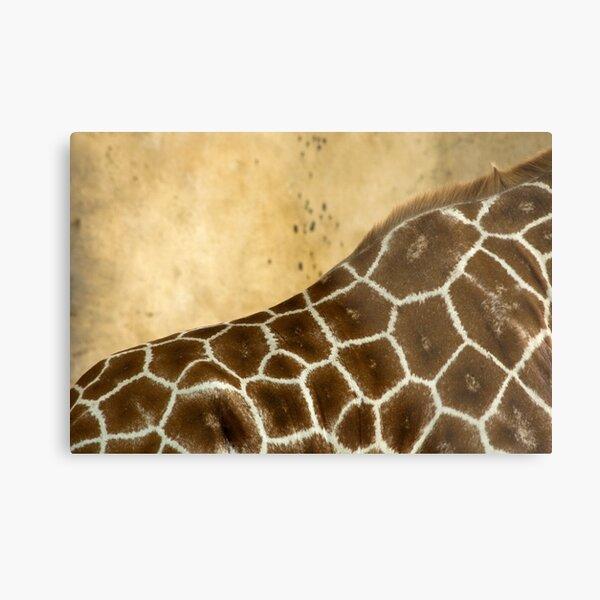 Giraffe Abstract Metal Print