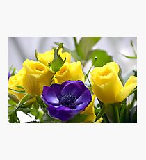 Yellow Roses and Purple Anemones......... Photographic Print