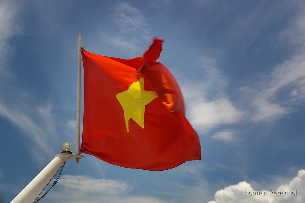 Vietnam by Norman Repacholi
