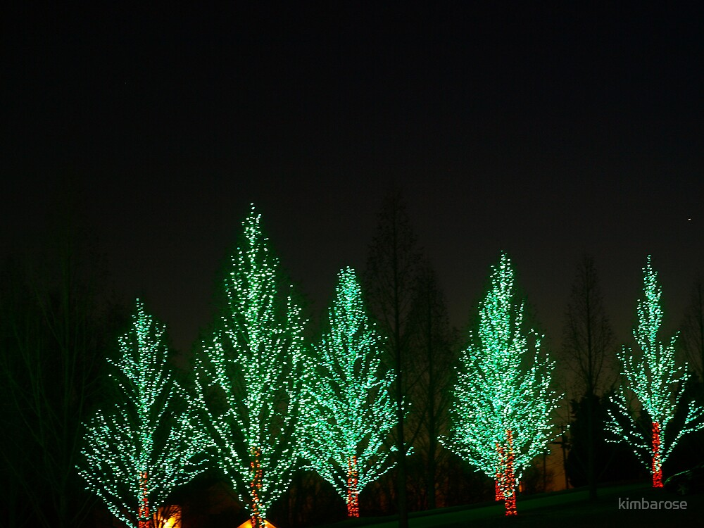 Christmas Tree Row by kimbarose