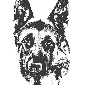 German Shepherd by Hujer