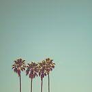 Santa Cruz by evStyle