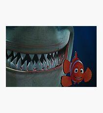 Nemo Photographic Print