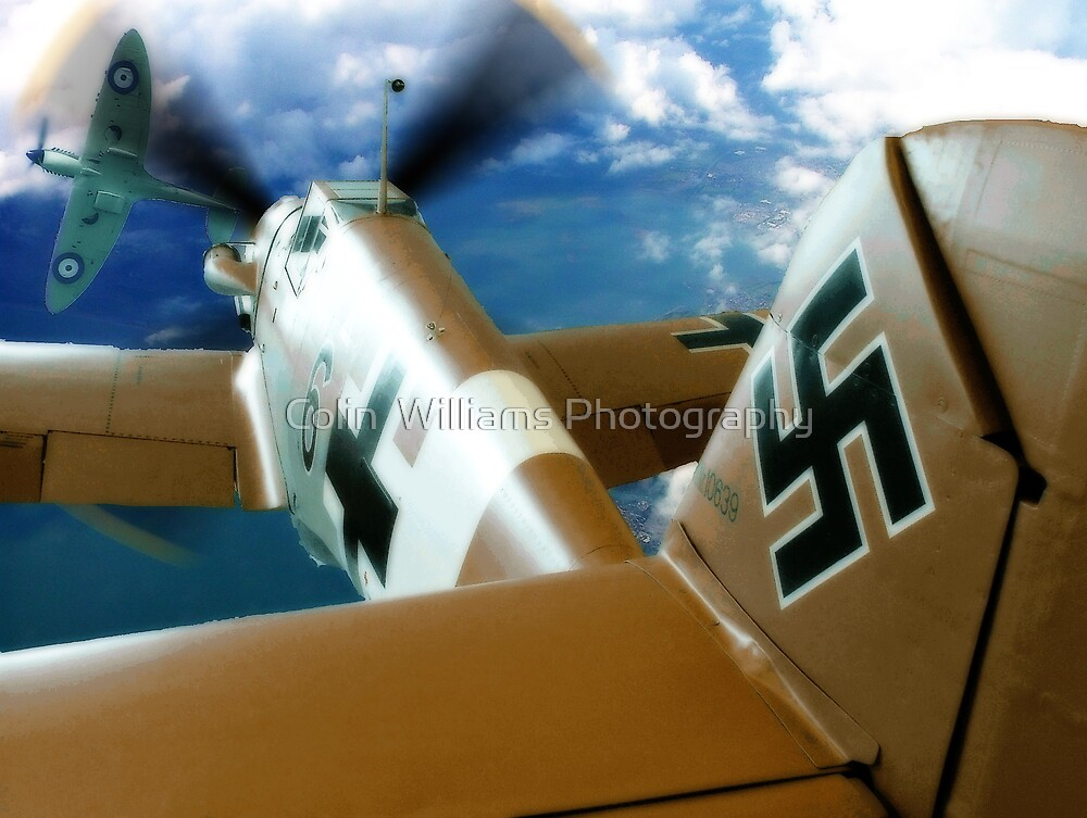 Dogfight - Colour by Colin  Williams Photography