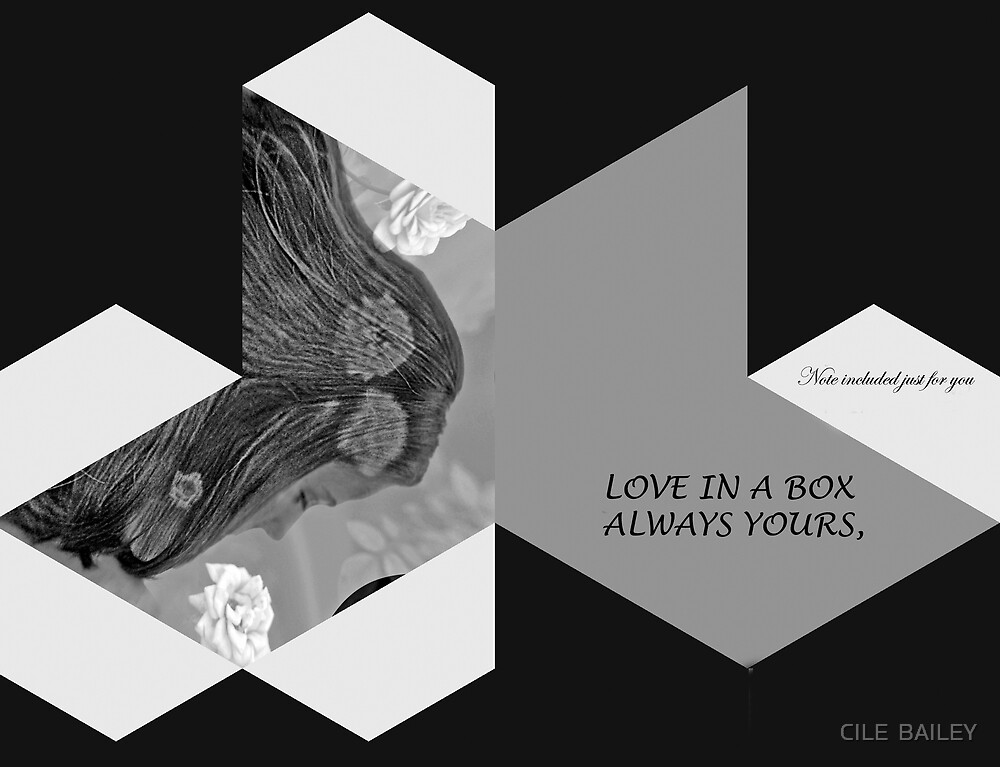Message in a box by CILE  BAILEY