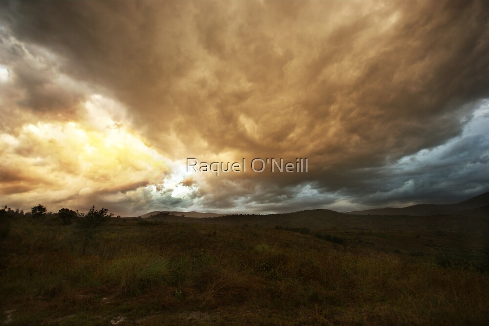 The Storm by Raquel O'Neill