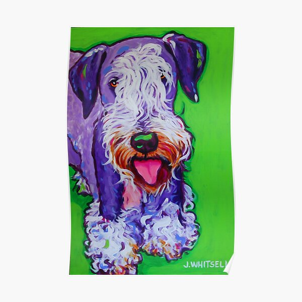 Colorful Fun Cesky Terrier - Similar to Schnauzer- j. Whitsell Art Poster