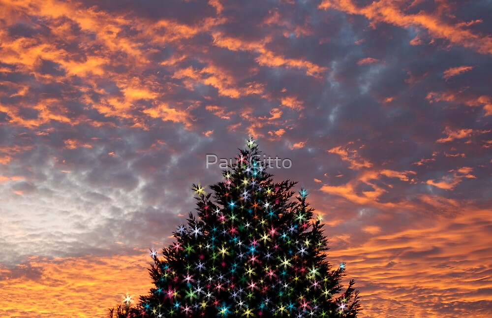 Christmas Sky by Paul Gitto