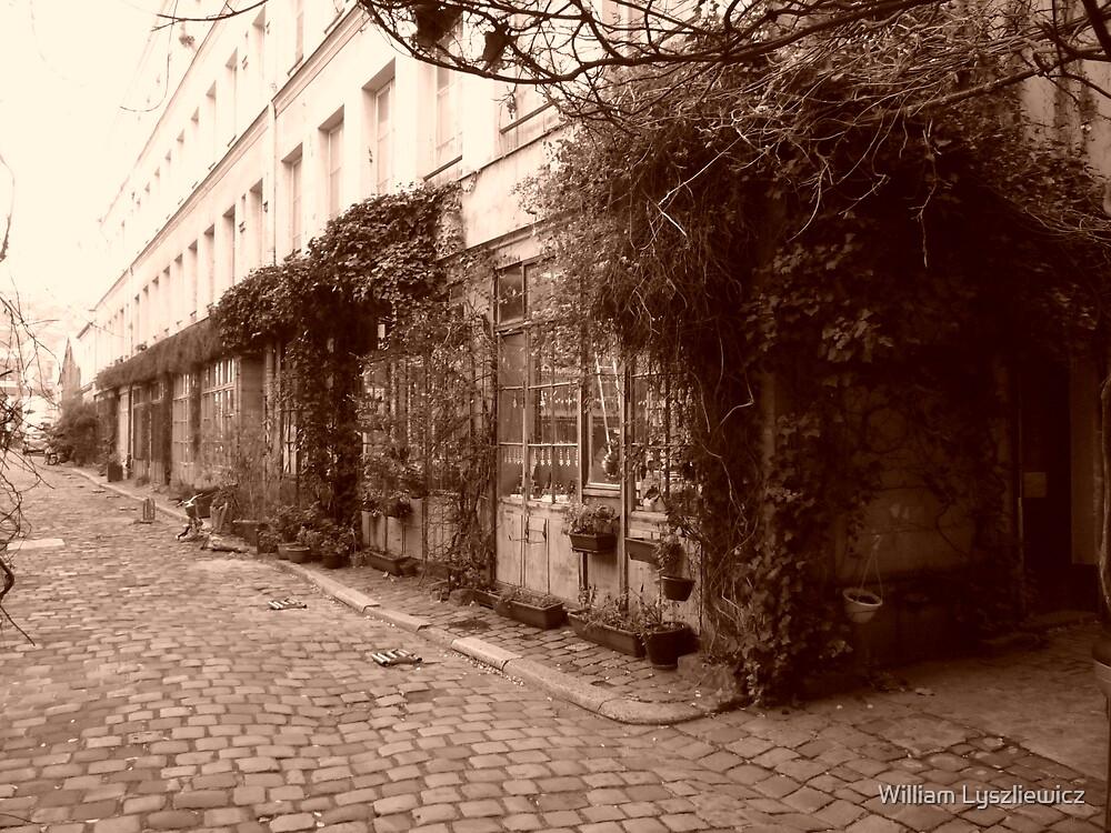 vieille courrée de Paris by william lyszliewicz