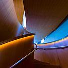 Elvandar 4 by John Velocci