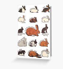Rabbit Breeds Greeting Card
