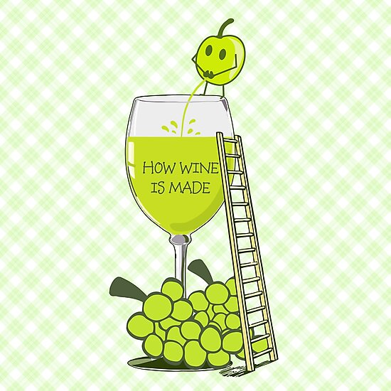 How Wine is Made Funny Illustration by ironydesigns
