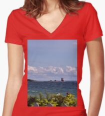 View from Mackinac Island Women's Fitted V-Neck T-Shirt