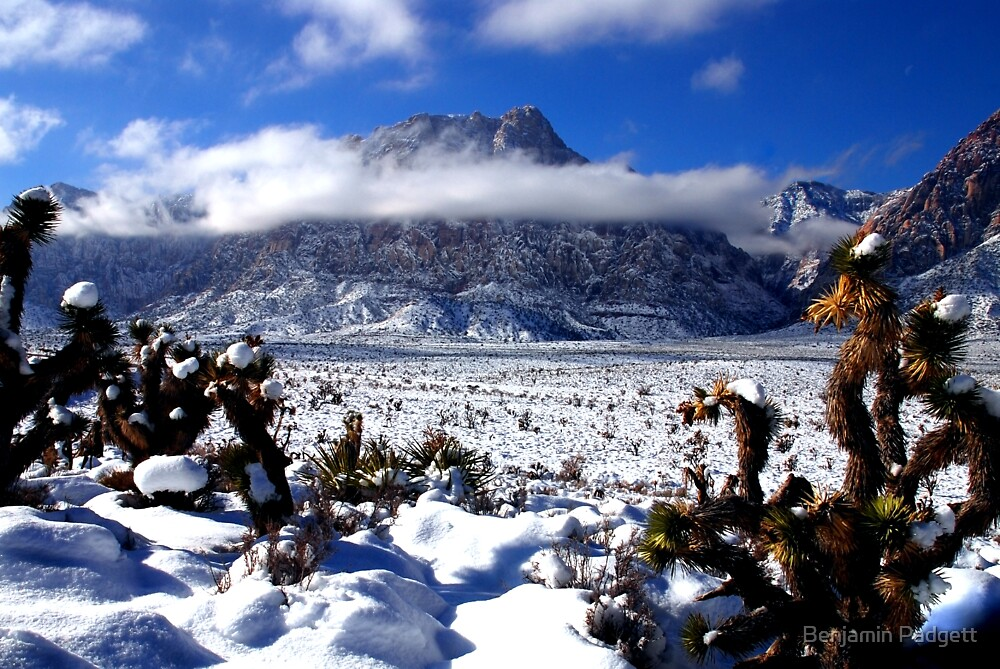 Heavenly Mount Wilson by Benjamin Padgett