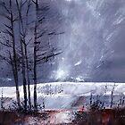 Snowscape 1 by Anil Nene