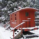 The Frozen Train Car by NancyC