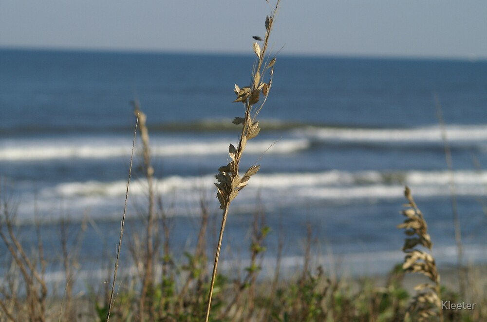 Outer Banks by Kleeter