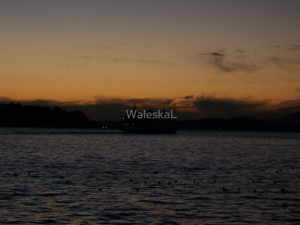 Sunset Silhouettes by WaleskaL