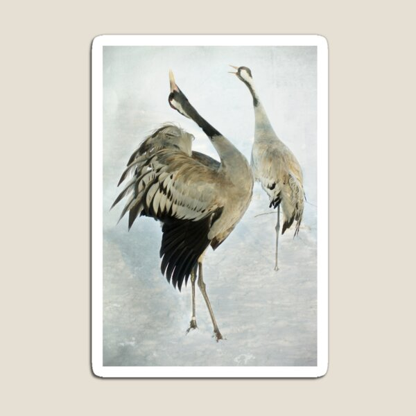The Dance of the Cranes - 2 of 2 Magnet