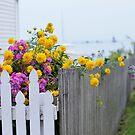 Dreamy Mackinac Island by photolodico