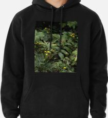 The Green of the Mackinac Island Forest Floor Pullover Hoodie