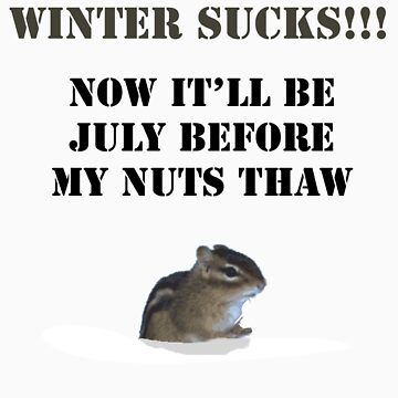 Winter Sucks! by BiGPaPa