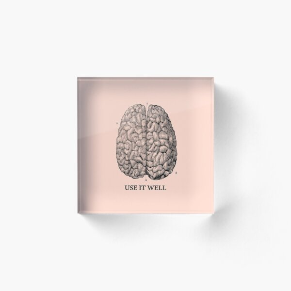 Use it well - Brain  Acrylic Block