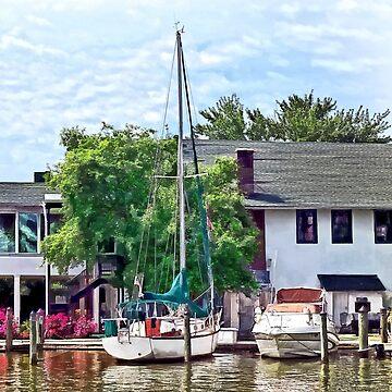 Alexandria VA - Docked Boats by SudaP0408