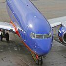 Blue Airplane by Karl R. Martin