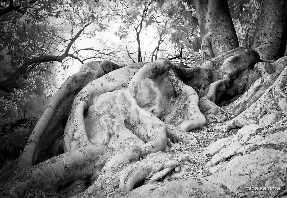Hide and Seek by olga zamora
