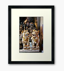 The twins - handsome little dragons Framed Print