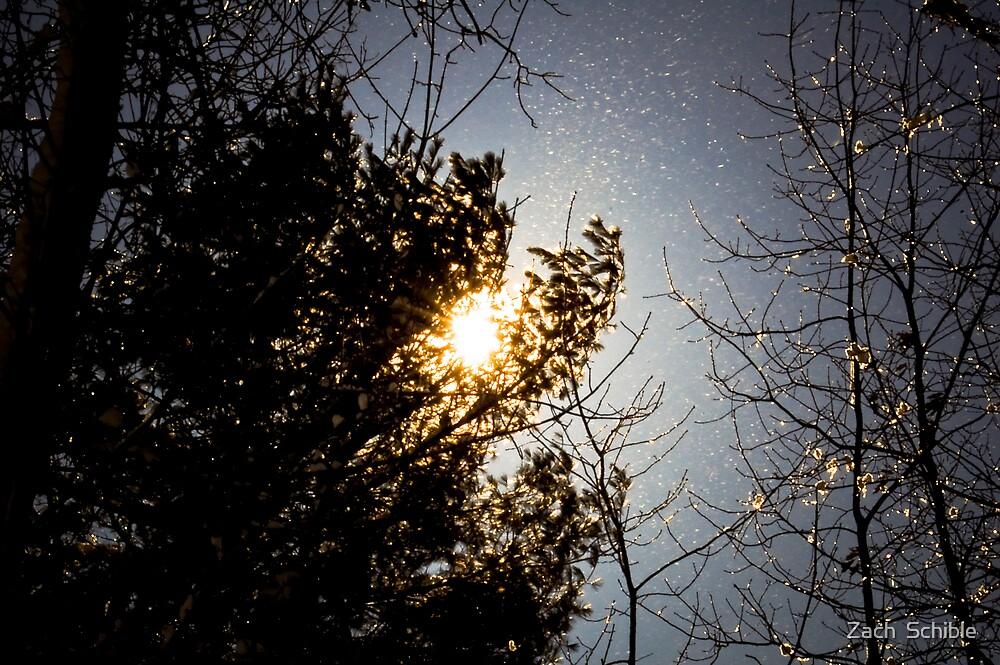 Winter Fairy Tale  by Zach  Schible
