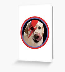 Bowie Dog Greeting Card