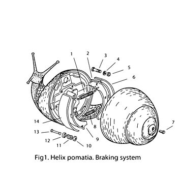 BRAKING SYSTEM by gotoup